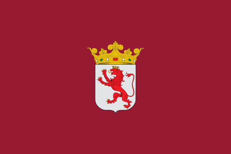 bandera_leon-donderepararportatil.com
