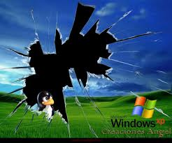 pantalla_rota_windows_linux-donderepararportatil.com