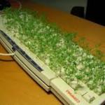 teclado con cesped